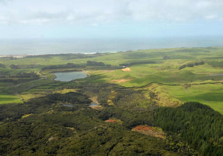 Aerial view of Waimarama Orchard