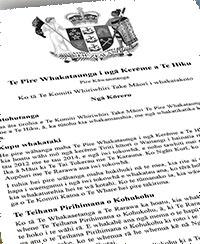 Te-Hiku-Claims-Settlement-Bill-1-vert