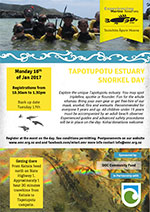 more details about snorkeling day